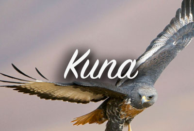 Kuna Idaho New Construction