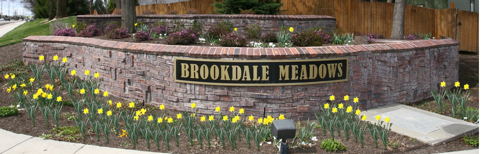 Homes for sale at Brookdale Meadows Subdivision Boise Idaho
