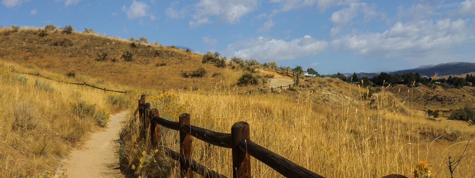 Boise foothills in North Boise Idaho