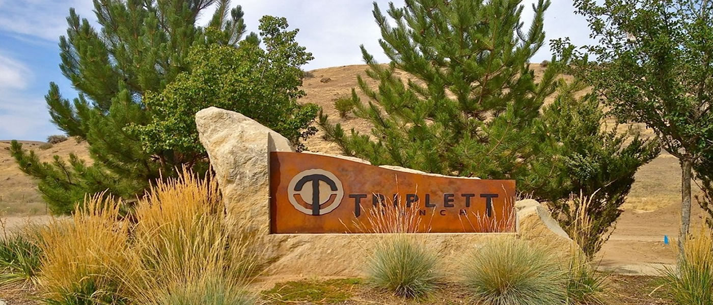 Homes for sale at Triplett Ranch Subdivision Boise Idaho