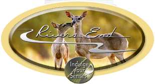 Eagle Idaho Subdivision Homes for Sale at Rivers End