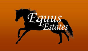 Equus Estates of Eagle IDaho