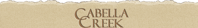 Meridian Idaho Subdivision Homes for Sale at Cabella Creek