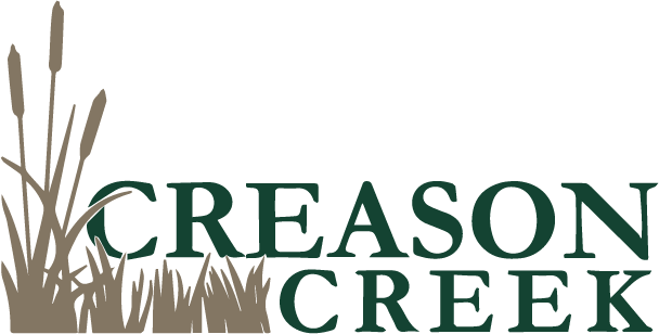 Meridian Idaho Subdivision Homes for Sale at Creason Creek