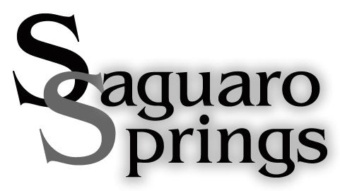 Meridian Idaho Subdivision Homes for Sale at Saguaro Springs