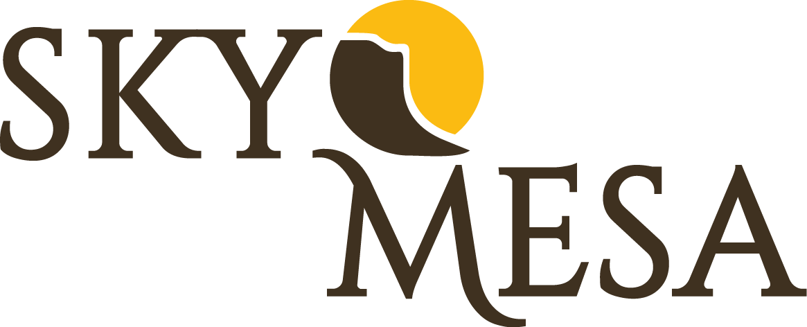 Sky Mesa Meridian Idaho- 2020 Best Selling Community